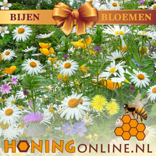 Bijen Bloemen Mengsel Honing Online Bloemenzaad Vlinders