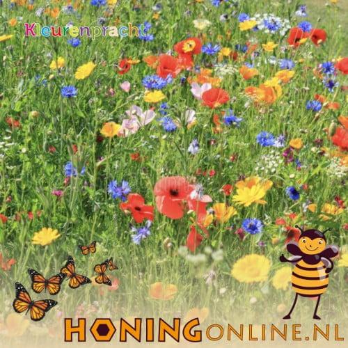 Bijenmengsel Vlindermengsel Kopen Kleuren Pracht