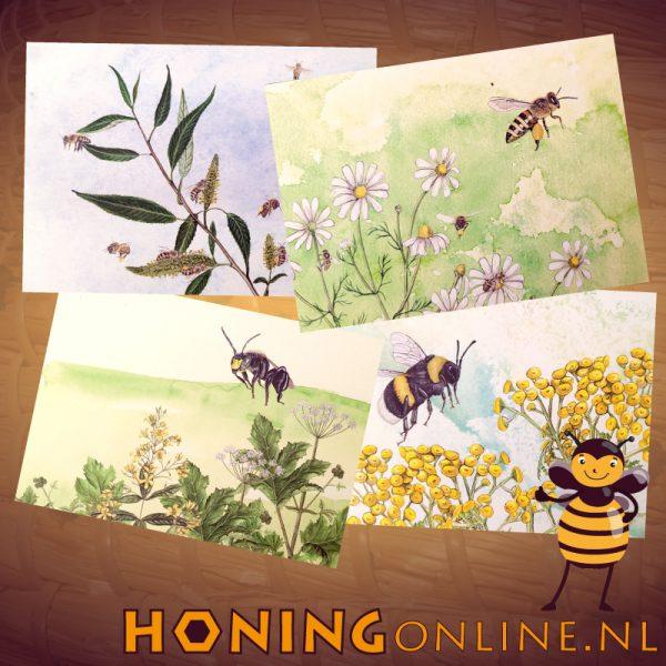 Wens Kaarten Set Honing Bijen